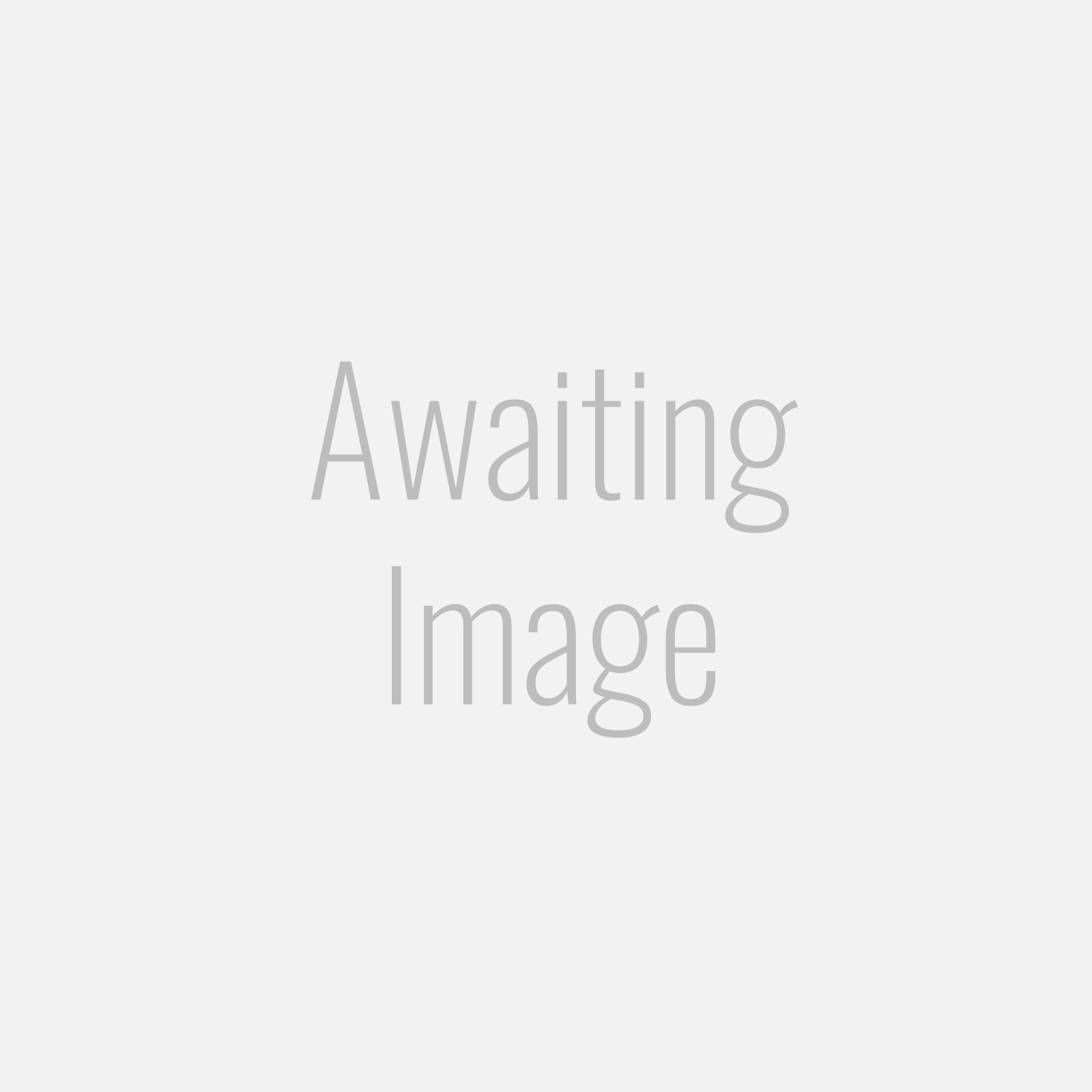 Single Banjo Bolt - M10 x 1.00